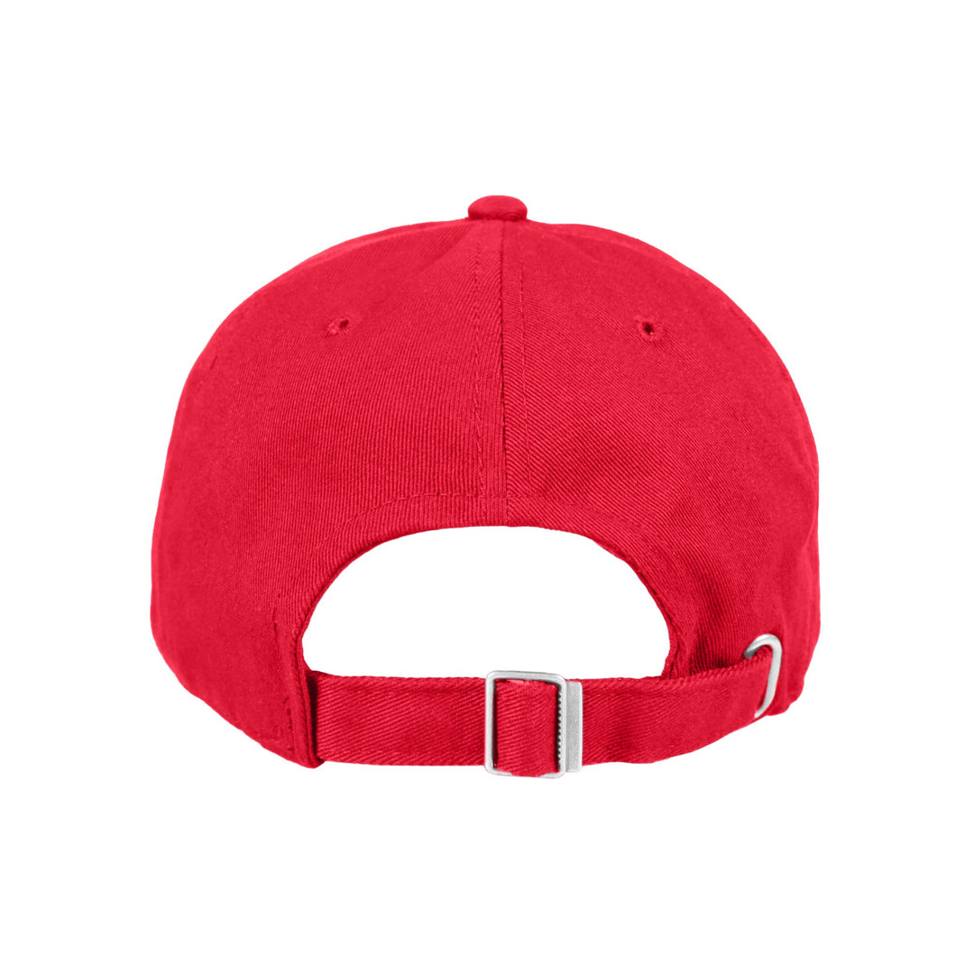 DRUMSY™ | NEWS DAD HAT (RED)