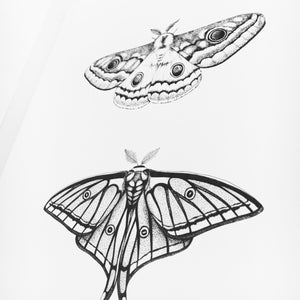 Moth Plate One