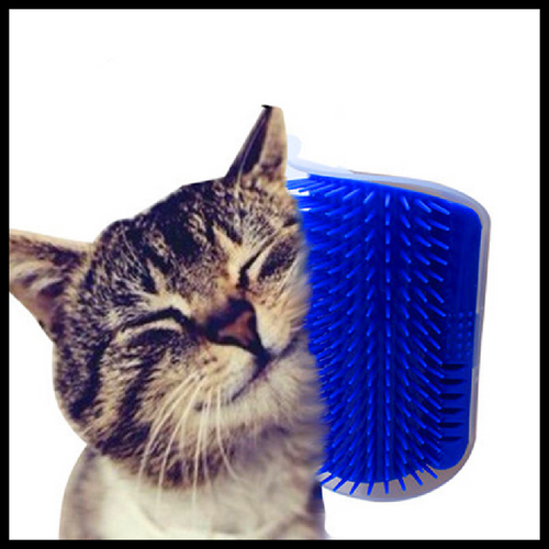 Self Grooming Catnip Brush