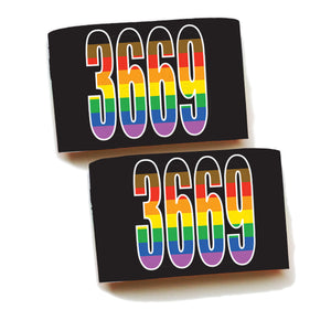 Armbands-Single Pair-LGBTQ+ Flag Print!