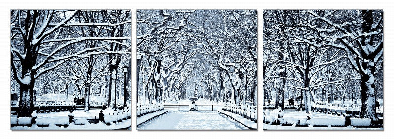 Modrest Winter Trees 3-Panel Photo On Canvas