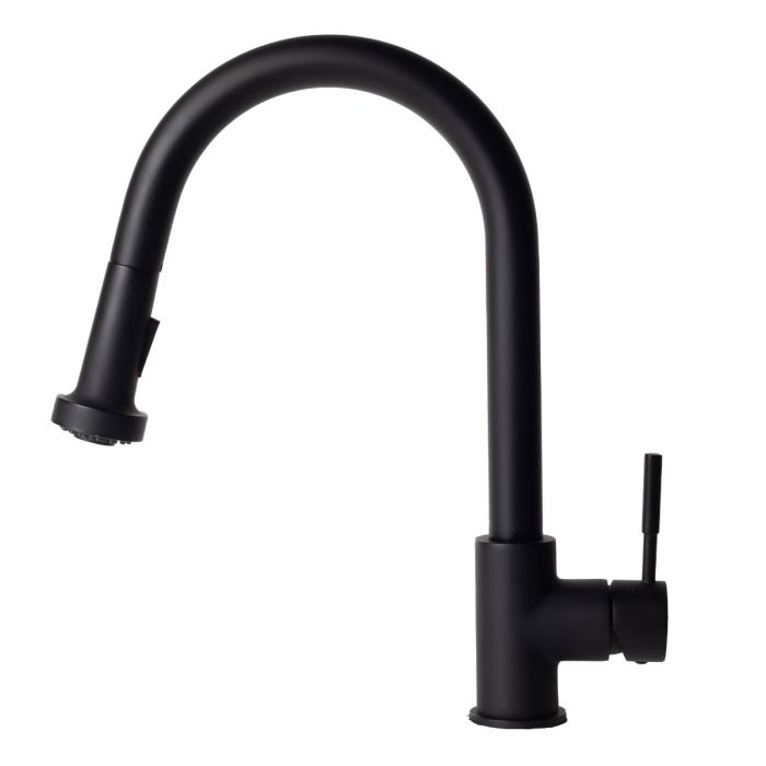 ZLINE Monet Kitchen Faucet FPNZ-MB