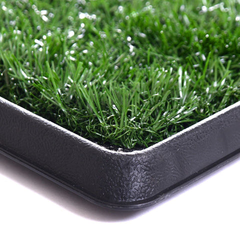 Image of Grass Mat Potty Trainer