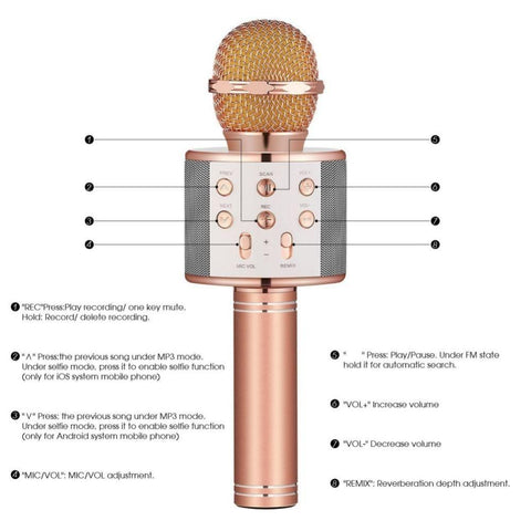 Image of Karaoke Microphone