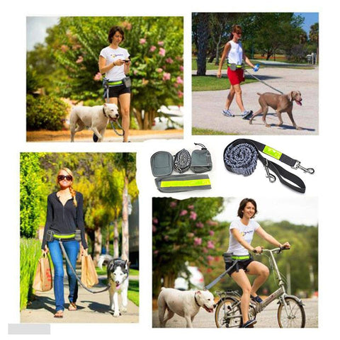 Image of Hands-Free Dog Leash
