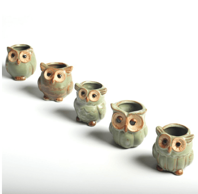 Image of 5pc Owl Flower Pots