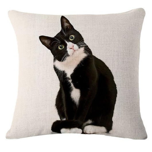 Black Cat Cushion Covers