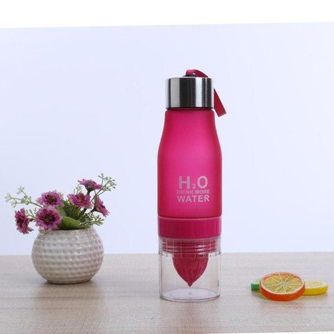 Image of 650ml Infuser Water Bottle