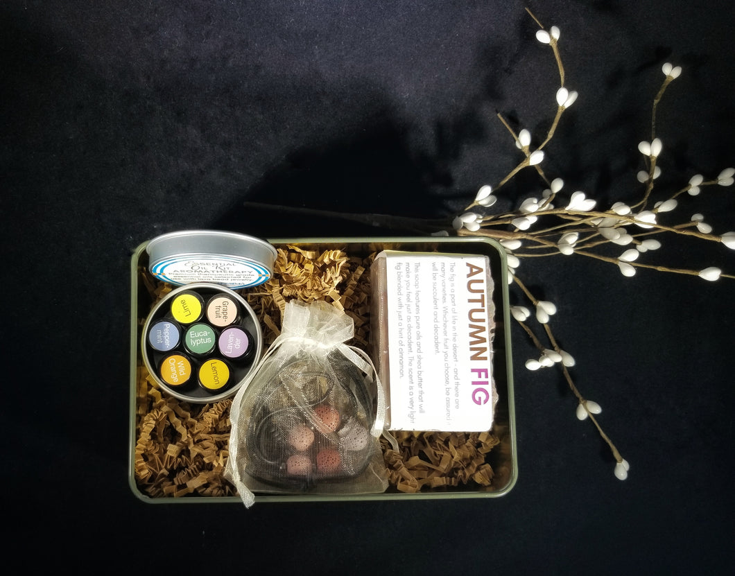 Lava Bead and Essential Oils KIT