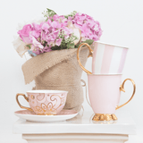 Blush Stripe & Blush Mug Set - Set of 2
