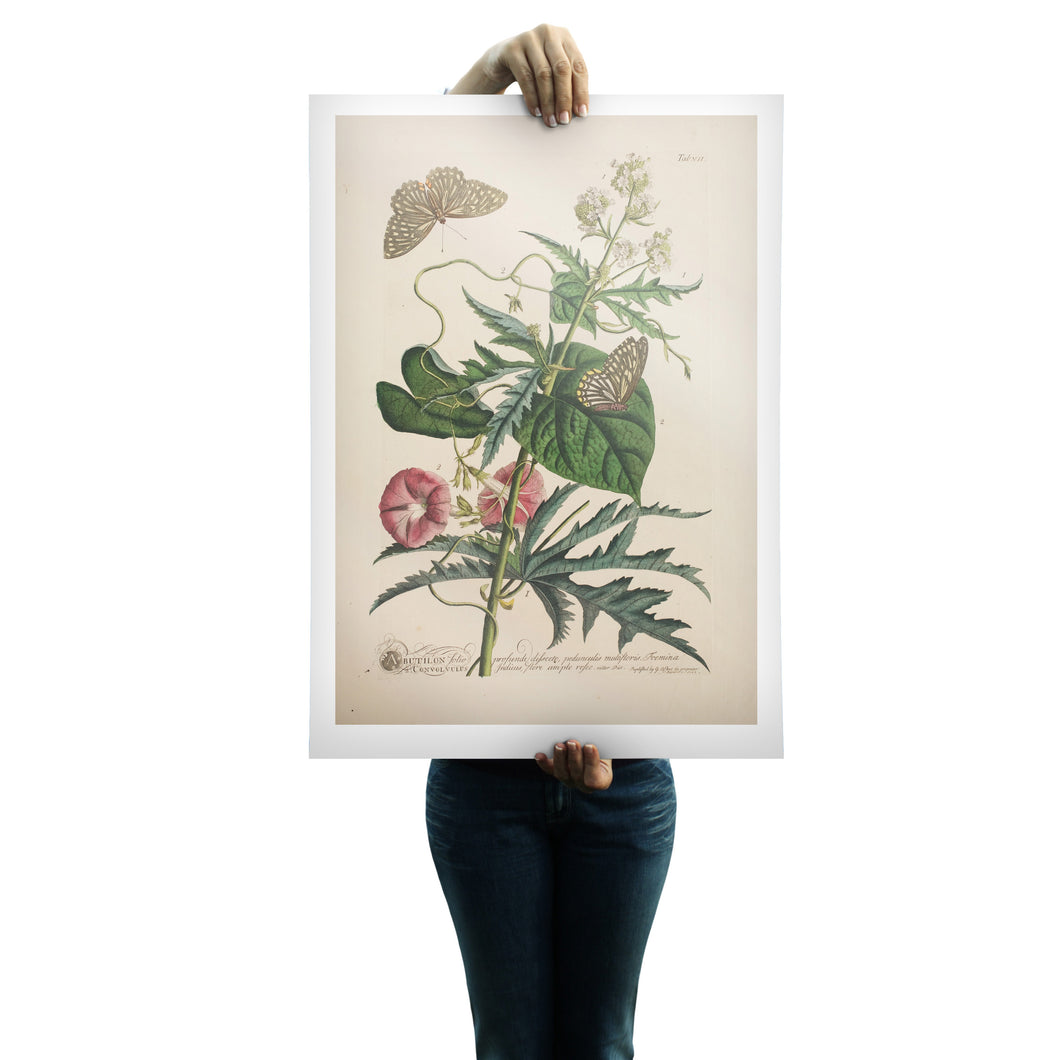 archival art prints quality