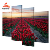 Framed Canvas Print Art Painting HD Picture for Home Wall Decoration WJF010