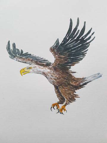 Original watercolor Eagle A4