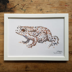 "Artprint watercolor ""Toad dotted frog"""