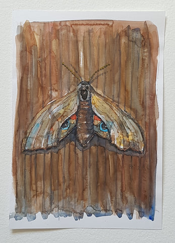 Original watercolor butterfly on wood wall artwork by Frits Ahlefeldt