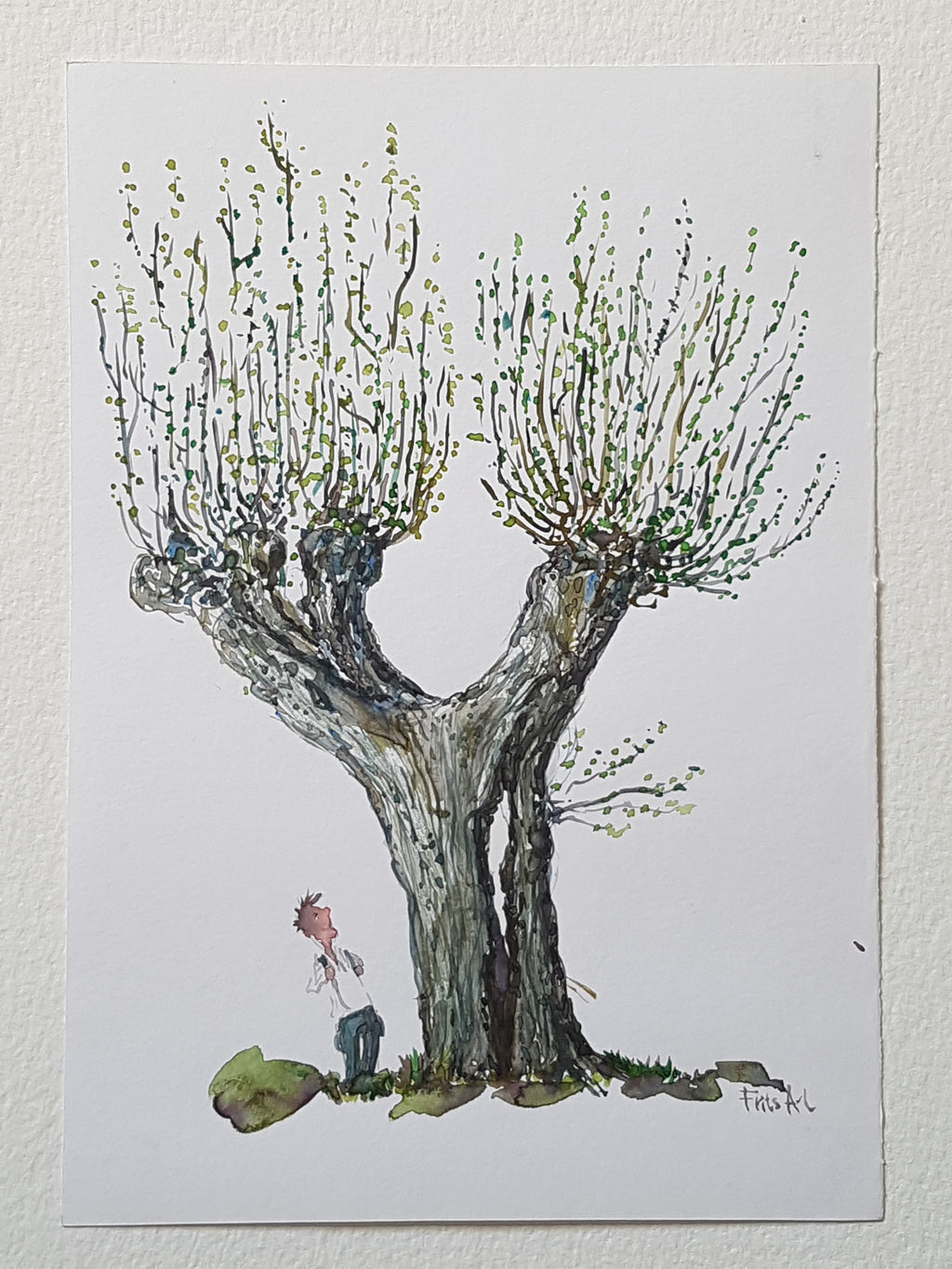 "Original ""tree and hiker Coast trail"""
