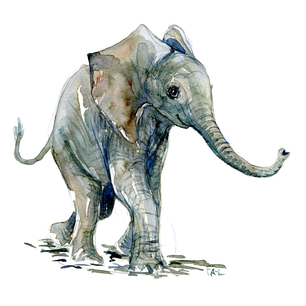 Artprint watercolor Young elephant front