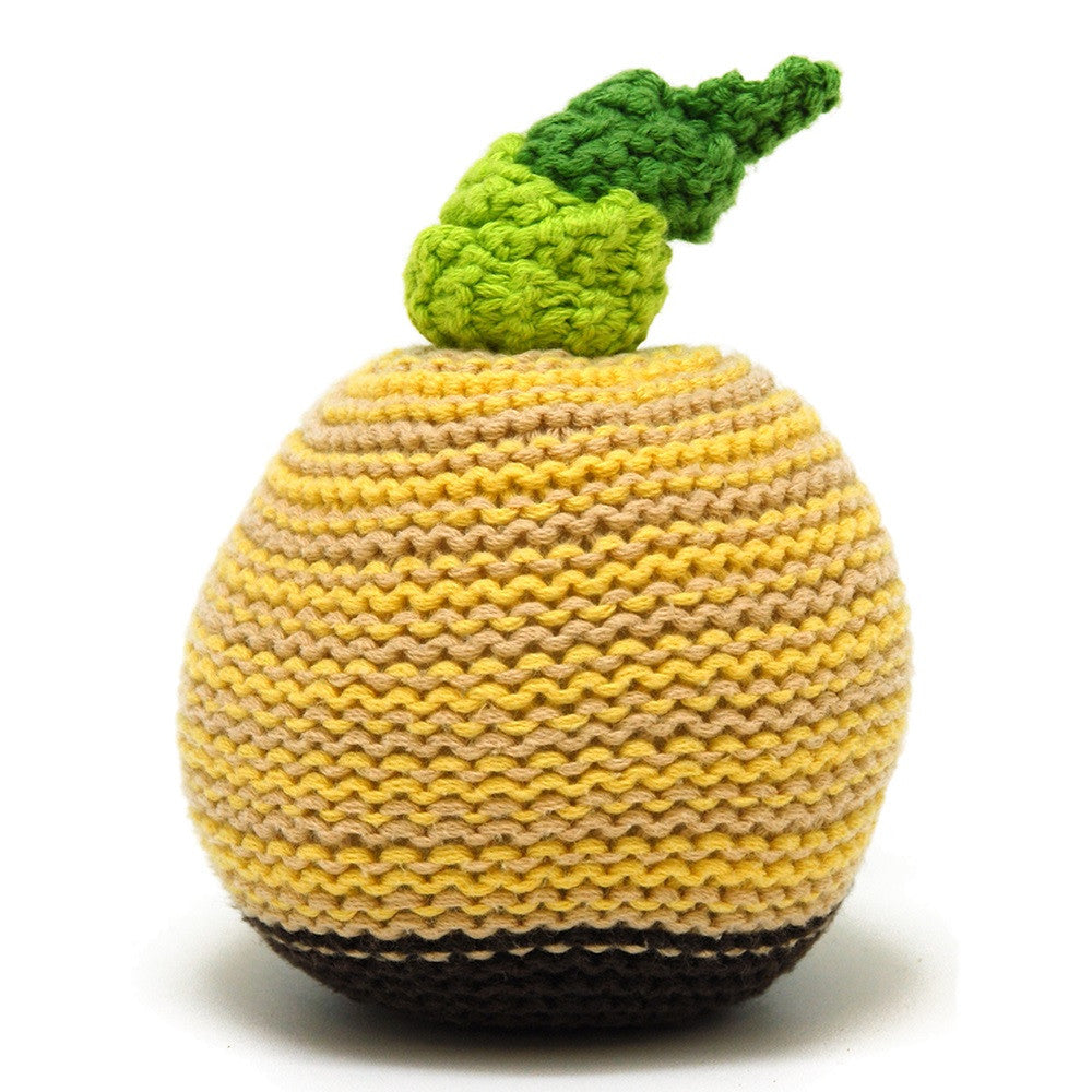 Pebble Food Rattle – Pineapple