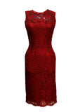 Luxury DOLCE & GABBANA Bordeaux Midi Dress