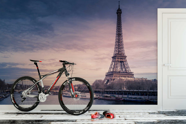 Eiffel Tower River bike