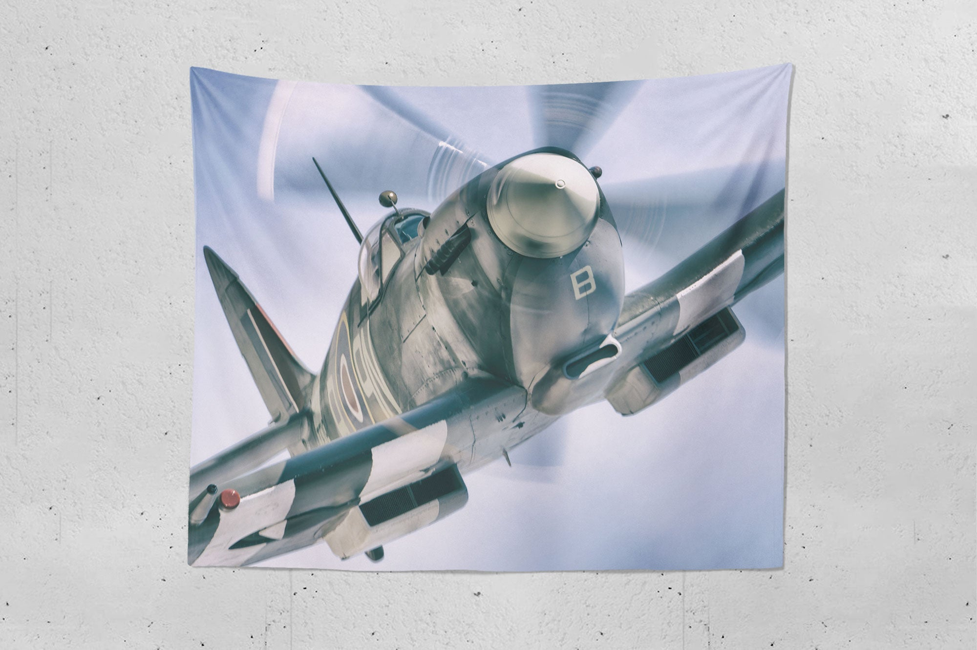 Eye To Eye With A Spitfire Wall Hanging Tapestry