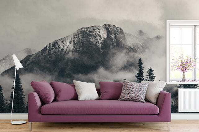 Mountain Grey - Feature Walls