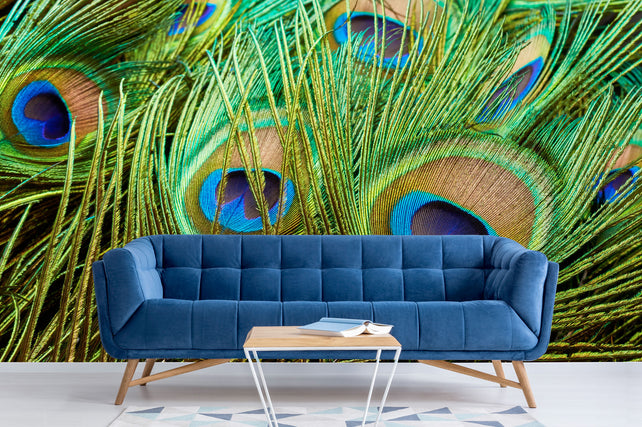 Peacock Feathers Blue sofa