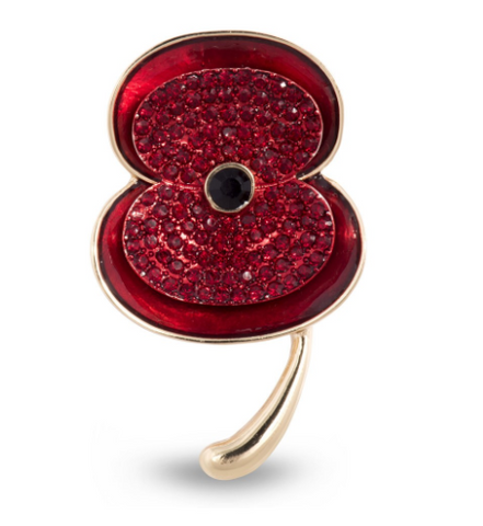 Remembrance Sunday the Royal British Legion Poppy
