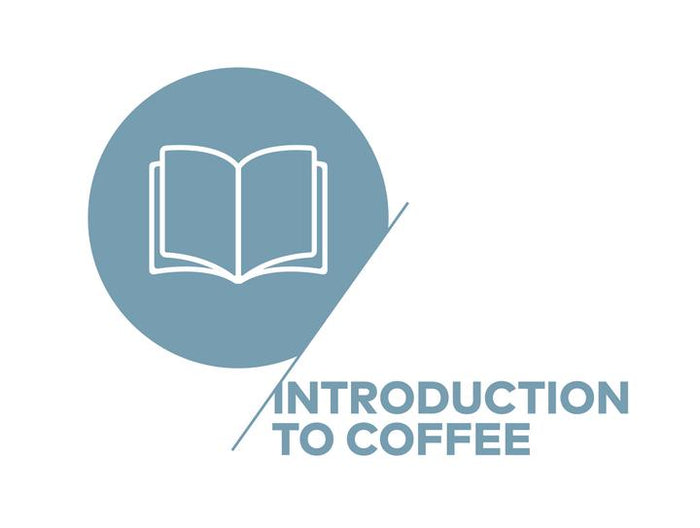 SCA - Introduction to Coffee