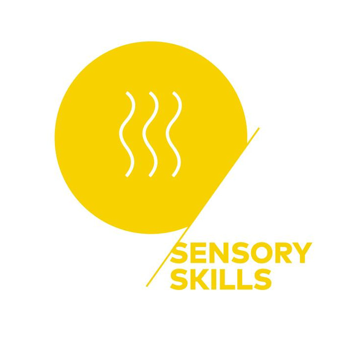 SCA Sensory Skills (Foundation)