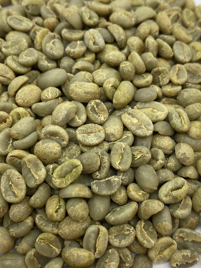 Ethiopia Limu Illubabor Washed