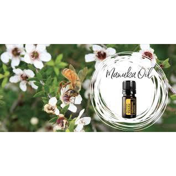 The Buzz About Manuka Oil - Myth or Miracle? Article by Claire Galea
