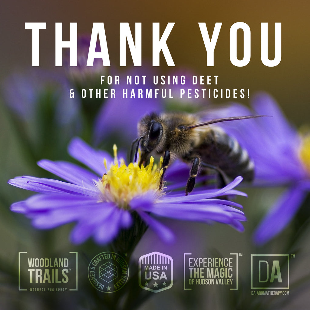 "This Summer we are doing more to raise the awareness of dangers of DEET and its effect on good insects like honeybees and butterflies. We are starting a poster campaign ""Thank You from Woodland Trails"" that we will distribute around the Hudson Valley at parks and hiking trails and we need your help as well!  Simply right click and save one of the ""Thank You"" images below and share it on your instagram, twitter, facebook and pinterest with a hashtag #savethebees  Together we can change the old school thinking that chemicals are the answer to our problems and move towards healthier, happier and safer planet Earth!"