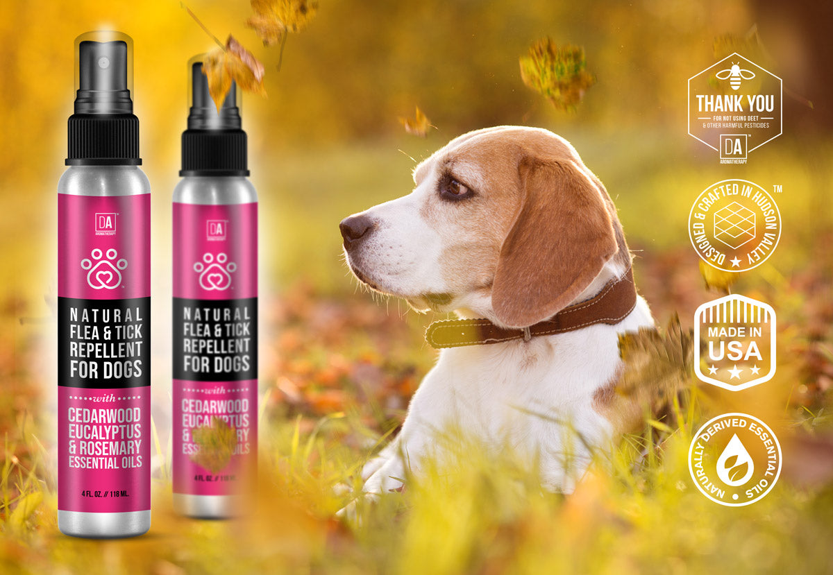 DA Aromatherapy Flea and Tick Spray for Dogs