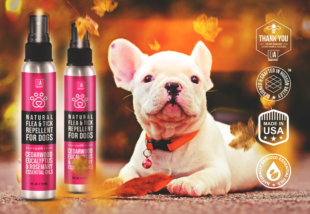 Our signature Natural Flea and Tick Repellent will keep your dog sting and bite-free without the use of pesticides that are harmful to humans, the environment at large, and especially insects that our agriculture depends on like honeybees. This natural repellent can help to protect you and your dog when sprayed on their coat without the fear of staining their pretty white fur.