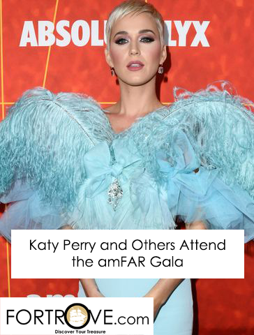 Katy Perry and Others Attend amFar Gala
