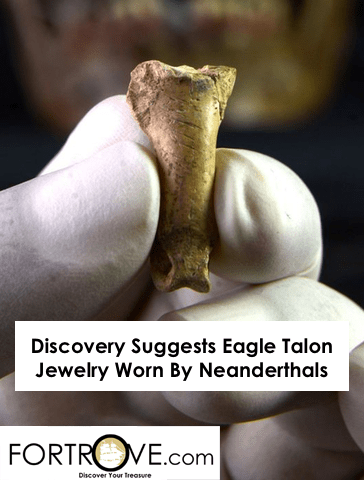 Discovery Suggests Eagle Talon Jewelry Worn By Neanderthals
