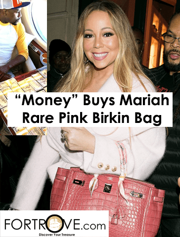 Mariah Carey Shows Off Pink Birkin from Floyd Mayweather in Grand Closet Tour