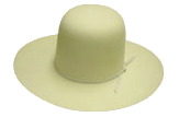 Hat Color - Bone
