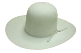 Hat Color – Silvermist