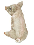Sitting Baby Pig Ornament