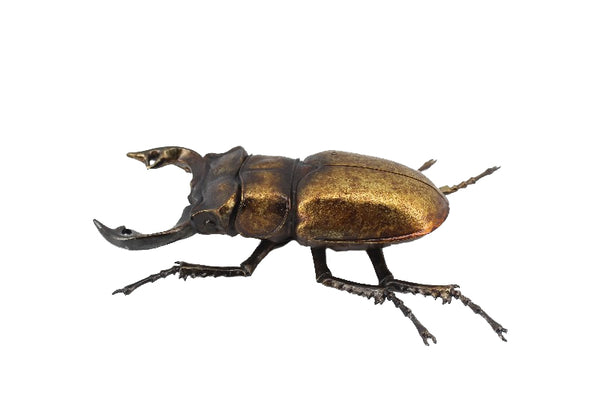 Metallic Giant Stag Beetle Wall Hanging Ornament