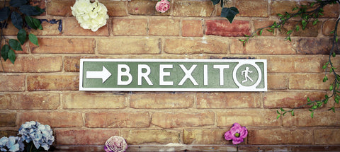 Brexit Green Vintage Retro Exit Novelty Sign