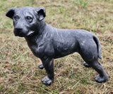Charcoal Grey Metal Effect Staffordshire Bull Terrier Puppy Garden Ornament