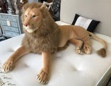 Large Lion with Fur Mane and tail soft toy