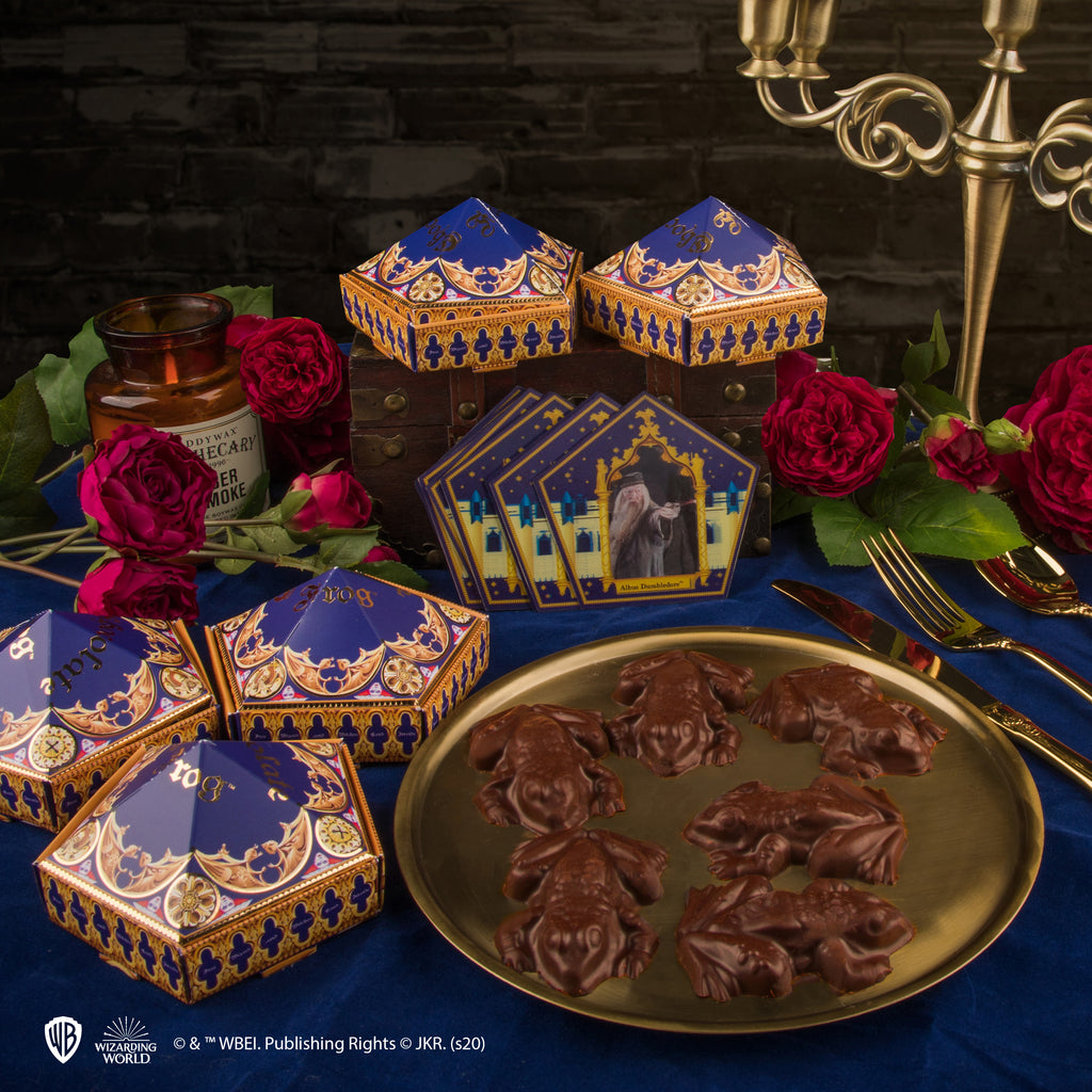 Chocolate Frog Mould + 12 Wizard Cards + 6 DIY boxes (New Edition)