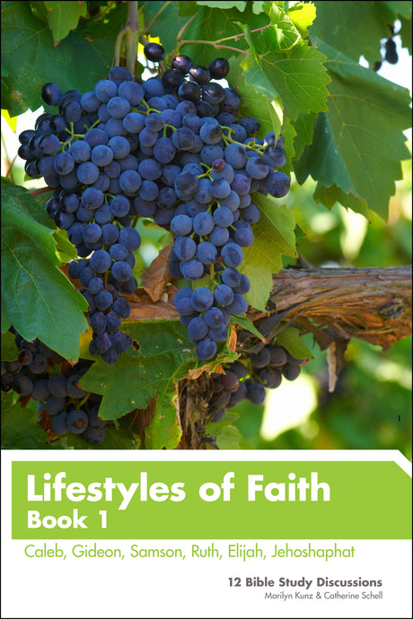 Lifestyles of Faith - Book 1