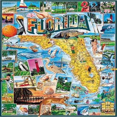 Florida 1000 Piece Puzzle - White Mountain Puzzles