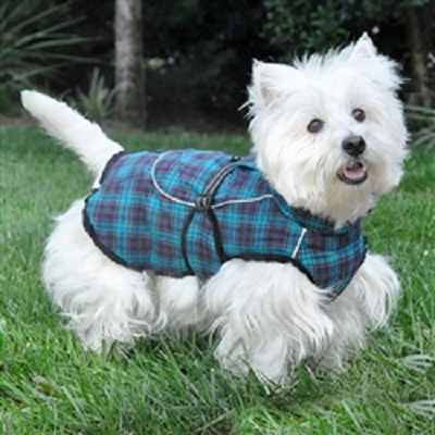 Navy Blue and Turquoise Plaid Alpine Flannel Coat