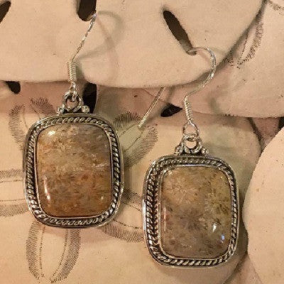 Cantley's Treasures Coralized Fossil Earrings Set In Sterling Silver